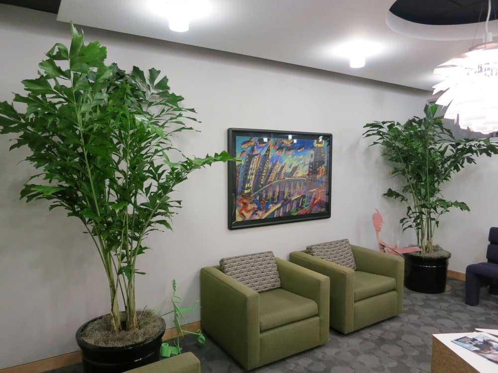 So For Excellent Plants And Excellent Service Call Beautification Thru  Vegetation At 310 305 7030. To See Our Complete Plant Selection, ...